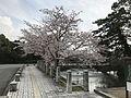 Moat near main gate of Yamaguchi Castle.jpg