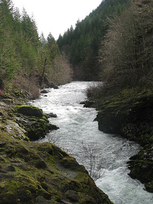 English: The upper Molalla River.