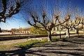 Montpellier Laqueduc du Peyrou (2396808112).jpg