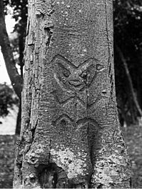 Moriori carving Chatham Islands 1900 cut.jpg