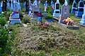 Mosyr Liubomlskyi Volynska-brotherly grave of 3 unknown UIA warriors-2.jpg