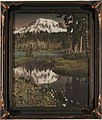 Mount Rainier and Reflection Lake with wildflowers, Washington, 1919-1920 (WASTATE 2879).jpeg