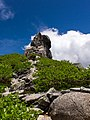 Mt.Kinposan(Kinpohsan) 20130707-P7070148 (9254851915).jpg