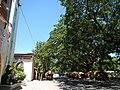 Muñoz,ChurchNuevaEcijajf9705 06.JPG