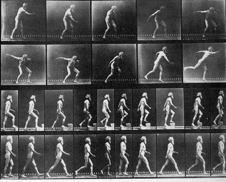 File:Muybridge disk step walk.jpg