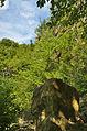 Národní přírodní památka Růžičkův lom, Čelechovice na Hané, okres Prostějov (07).jpg