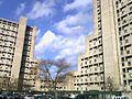 NYCHA1425.jpg