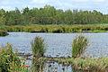 Nationaal Park De Alde Feanen. Locatie, It Wikelslân 013.JPG