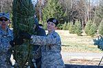 National Guard troops lend a hand in loading Trees for Troops 151130-Z-DE820-015.jpg