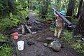 National Public Lands Day 2014 at Mount Rainier National Park (059), Narada.jpg