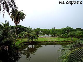 File:Natural beauty of bangladesh village JPG - Wikimedia