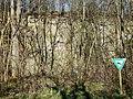 Naturdenkmal Ehemaliger Steinbruch Markgröningen.jpg