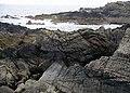 Nestends, Eyemouth - geograph.org.uk - 219632.jpg