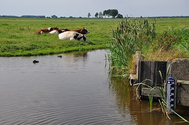 A scale measuring the water level in a polder near Zoetermeer, Netherlands. This location is roughly 18 feet below sea level. Photo by Vincent van Zeijst.