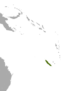 New Caledonia Flying Fox area.png