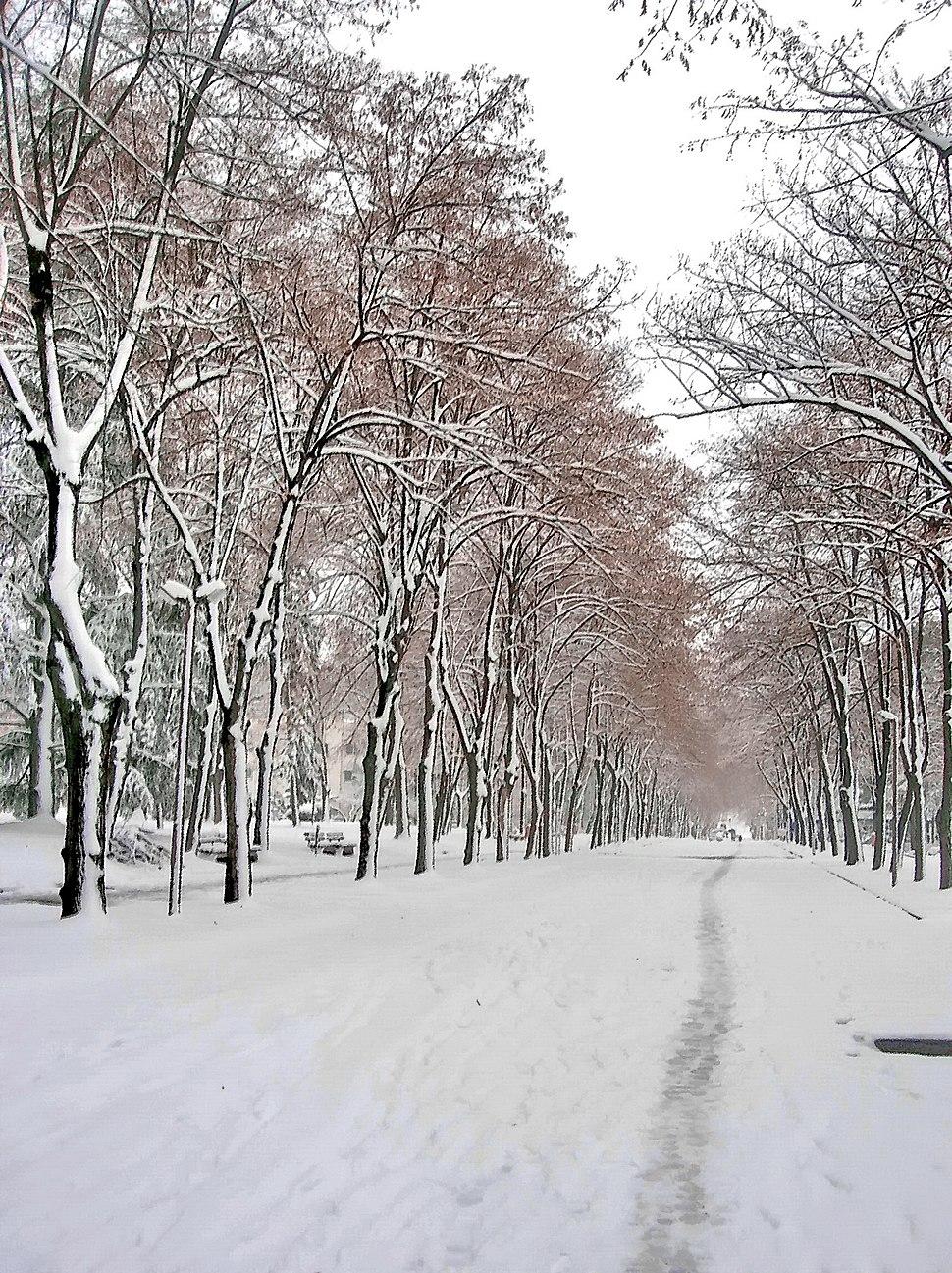 Niška Banja. 6