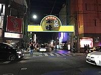 Nishi-Tachibana-dori Street at night.jpg