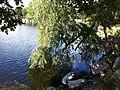 Norra Djurgården, Östermalm, Stockholm, Sweden - panoramio (1).jpg