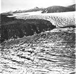 Norris and Taku Glaciers, terminus of valley glaciers with braided stream seperating the two glaciers, September 1, 1977 (GLACIERS 6076).jpg