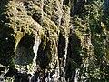 North Umpqua river (3021488917).jpg