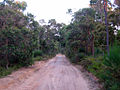 OIC Augusta hillview road 4.jpg