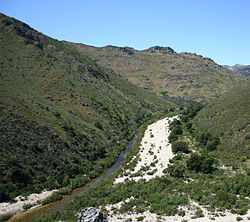 Olifants River (Western Cape).jpg