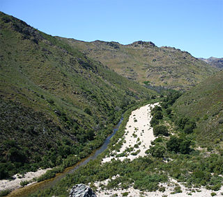 Olifants River (Western Cape) river in Western Cape Province of South Africa