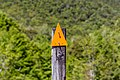 Orange triangle marking Wangapeka Track, Kahurangi National Park, New Zealand 02.jpg