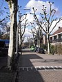 Oranje Nassauplein - Den Hoorn - 2010 - panoramio.jpg