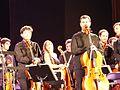 Orquesta sinfónica de Bankia, Madrid, España, 2017 14.jpg