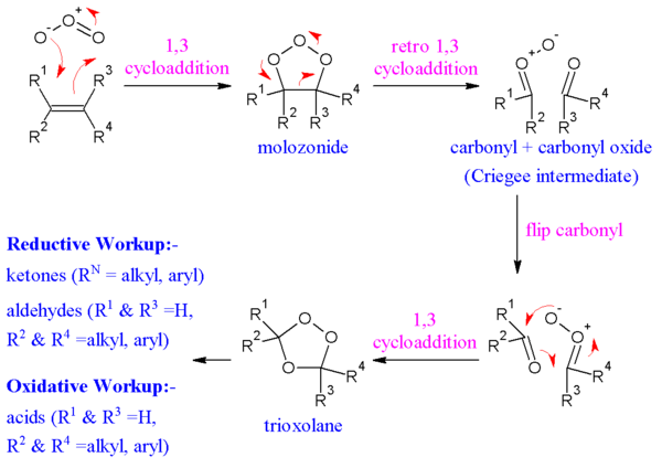 The reaction mechanism of ozonolysis.