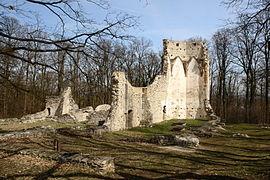 Pálos templom- és kolostorrom123.JPG