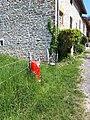 PEI à Digna, Jura 01.jpg