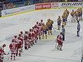 PSG Zlín v HC Oceláři Třinec 2010-10-01 (30).jpg