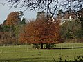 Paddocks, Greyfriars farm (geograph 3760565).jpg