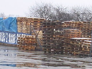 pallets stored outdoors