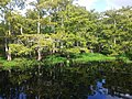 Palm Bay-Melbourne-Titusville, FL, FL, USA - panoramio (12).jpg