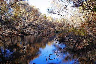 Hassayampa River river in the United States of America