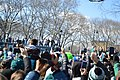 Parade (28377798459).jpg