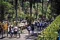 Parque Zoológico de São Paulo - Sao Paulo Zoo (11540209405).jpg
