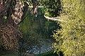 Parque do Eduardo VII (5580409889).jpg
