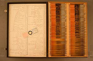 Eugène Penard - Collection Pénard
