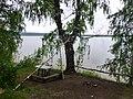 Permskiy r-n, Permskiy kray, Russia - panoramio (1199).jpg