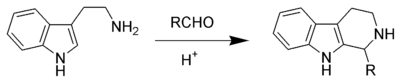 The Pictet–Spengler reaction