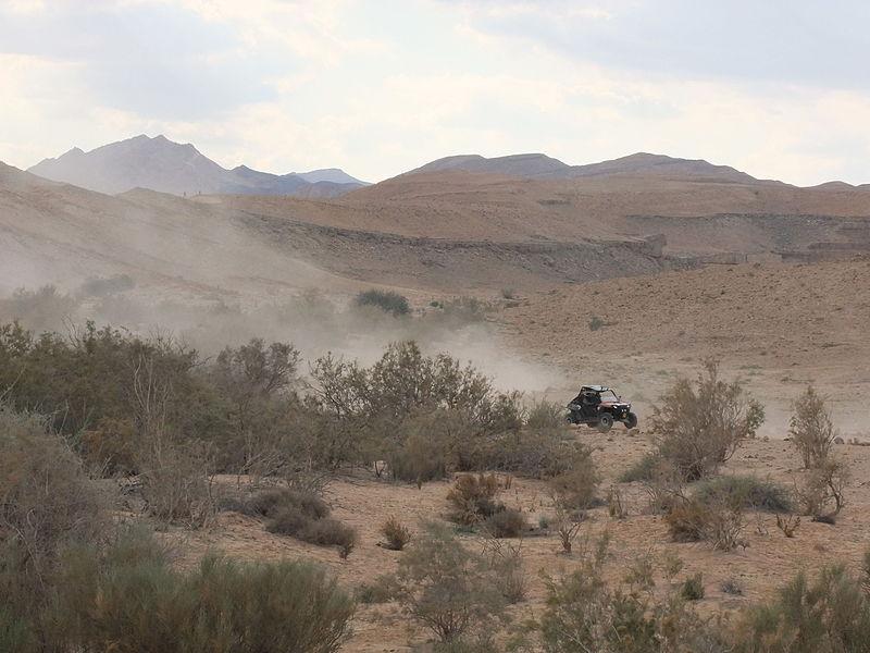 אבק במדבר