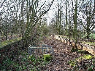Moorhouse and South Elmsall Halt railway station Disused railway station in South Yorkshire, England