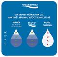 Pocari Sweat với thành phần chứa các ion thiết yếu như nước trong cơ thể.png