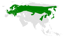 Poecile montanus distribution map.png