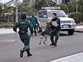 Police Dog (5905113954).jpg
