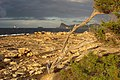 Port des Torrent - panoramio - anibal amaro (9).jpg